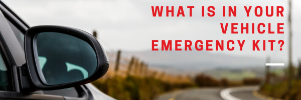 What is in your vehicle emergency kit?